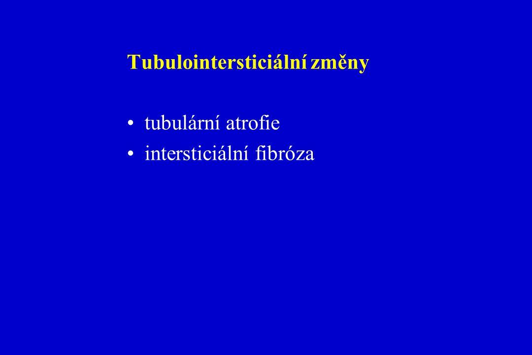 Tubulointersticiální změny tubulární atrofie intersticiální fibróza