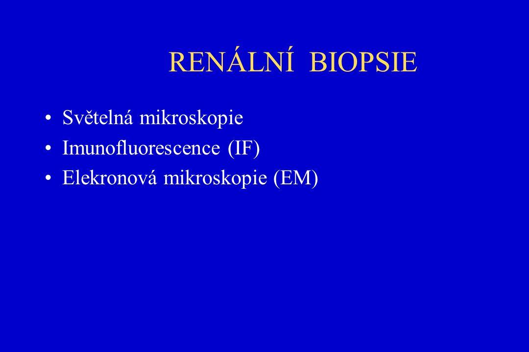 RENÁLNÍ BIOPSIE Světelná mikroskopie Imunofluorescence (IF) Elekronová mikroskopie (EM)