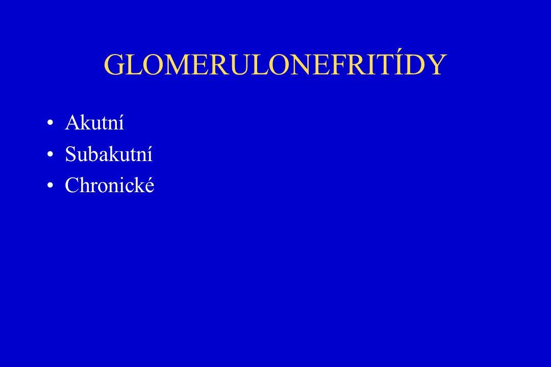 GLOMERULONEFRITÍDY Akutní Subakutní Chronické