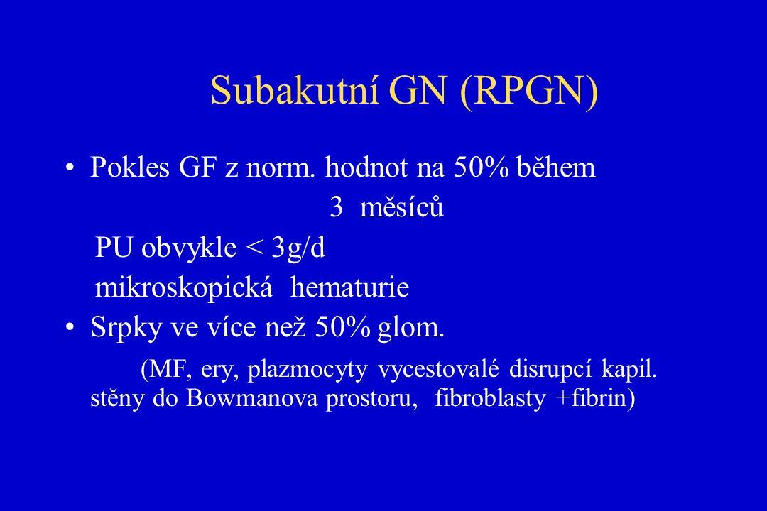 Subakutní GN (RPGN) Pokles GF z norm.