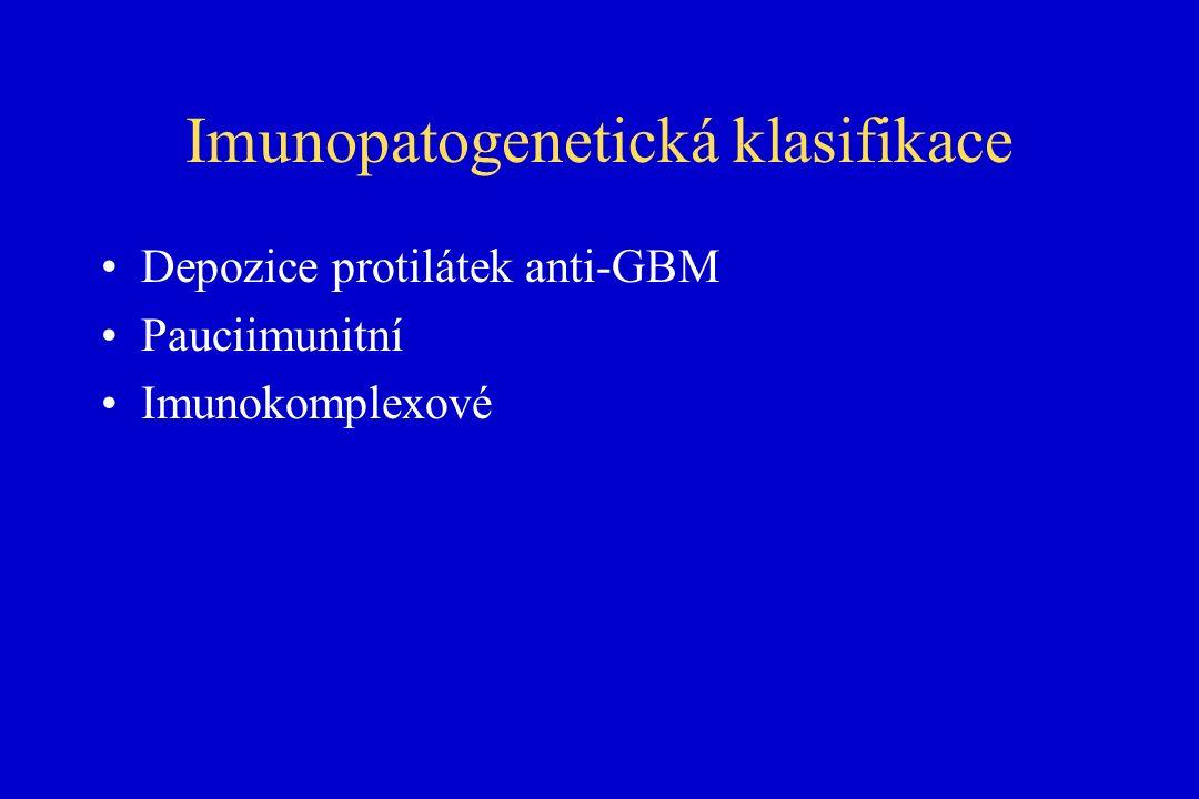Imunopatogenetická klasifikace Depozice protilátek anti-GBM Pauciimunitní Imunokomplexové