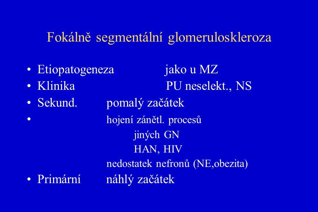 Fokálně segmentální glomeruloskleroza Etiopatogeneza jako u MZ Klinika PU neselekt., NS Sekund.