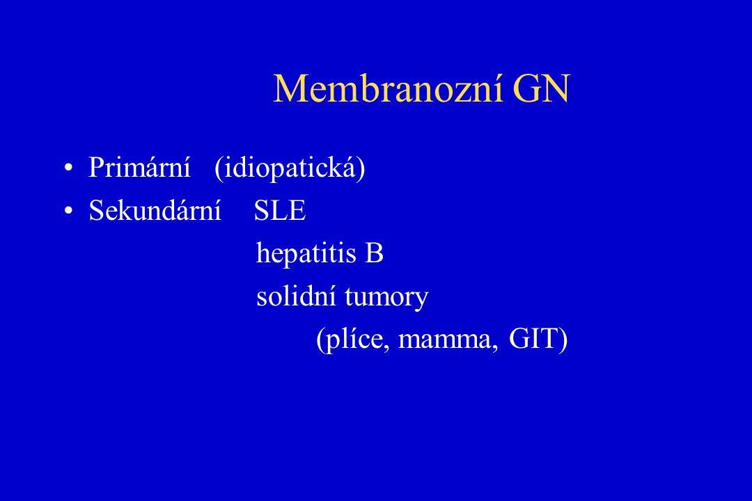Membranozní GN Primární (idiopatická) Sekundární SLE hepatitis B solidní tumory (plíce, mamma, GIT)