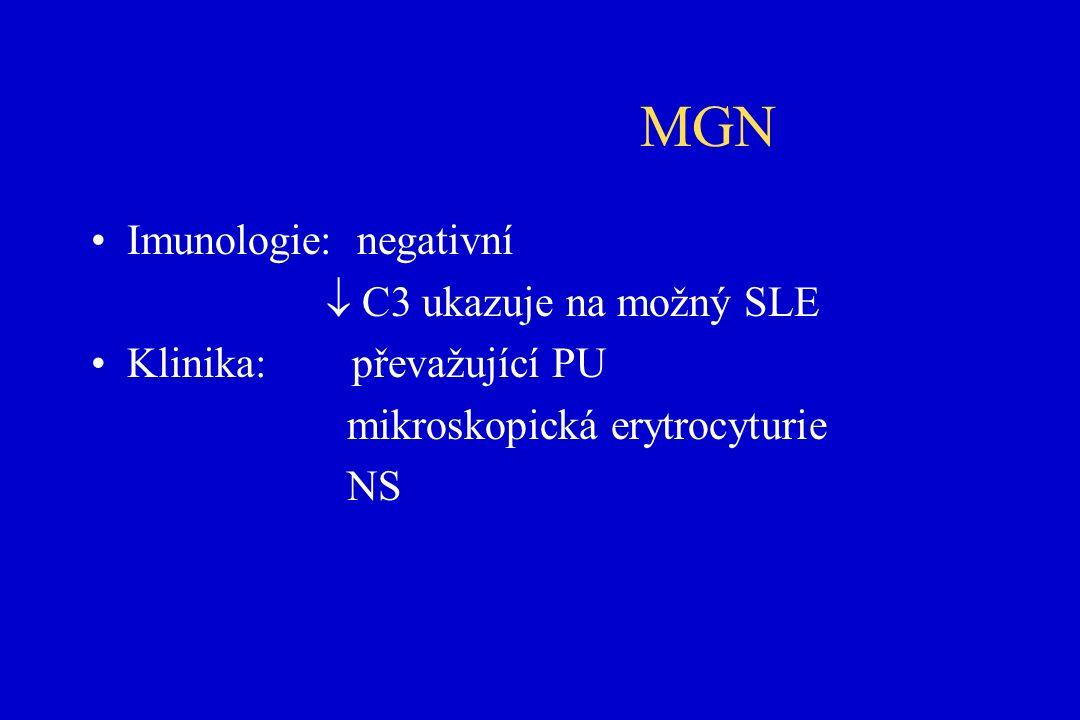MGN Imunologie: negativní  C3 ukazuje na možný SLE Klinika: převažující PU mikroskopická erytrocyturie NS