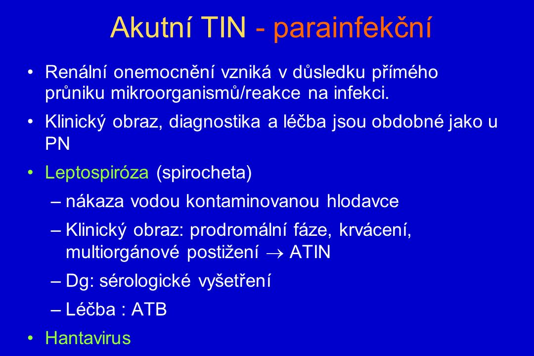 Akutní TIN - parainfekční Renální onemocnění vzniká v důsledku přímého průniku mikroorganismů/reakce na infekci.