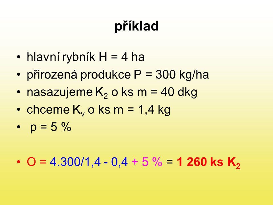 příklad hlavní rybník H = 4 ha přirozená produkce P = 300 kg/ha nasazujeme K 2 o ks m = 40 dkg chceme K v o ks m = 1,4 kg p = 5 % O = 4.300/1,4 - 0,4 + 5 % = 1 260 ks K 2