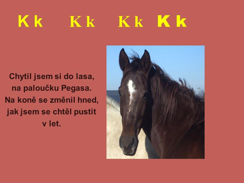 K k K k K k K k Chytil jsem si do lasa, na paloučku Pegasa. Na koně se změnil hned, jak jsem se chtěl pustit v let.