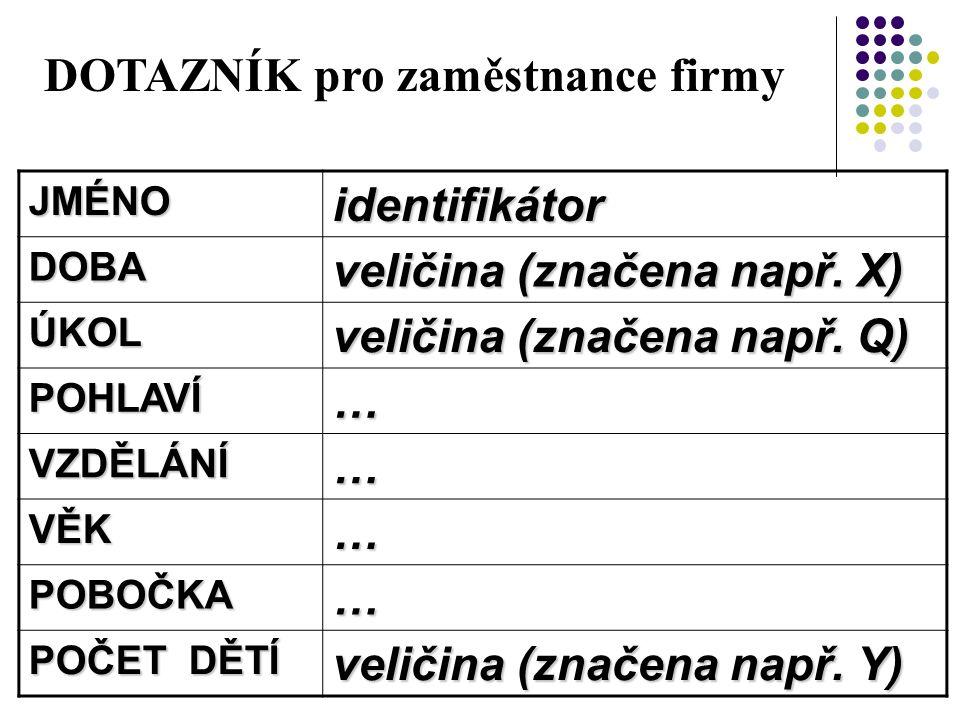 DOTAZNÍK pro zaměstnance firmy JMÉNOidentifikátor DOBA veličina (značena např.
