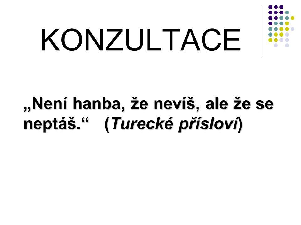 """KONZULTACE """"Není hanba, že nevíš, ale že se neptáš. (Turecké přísloví)"""