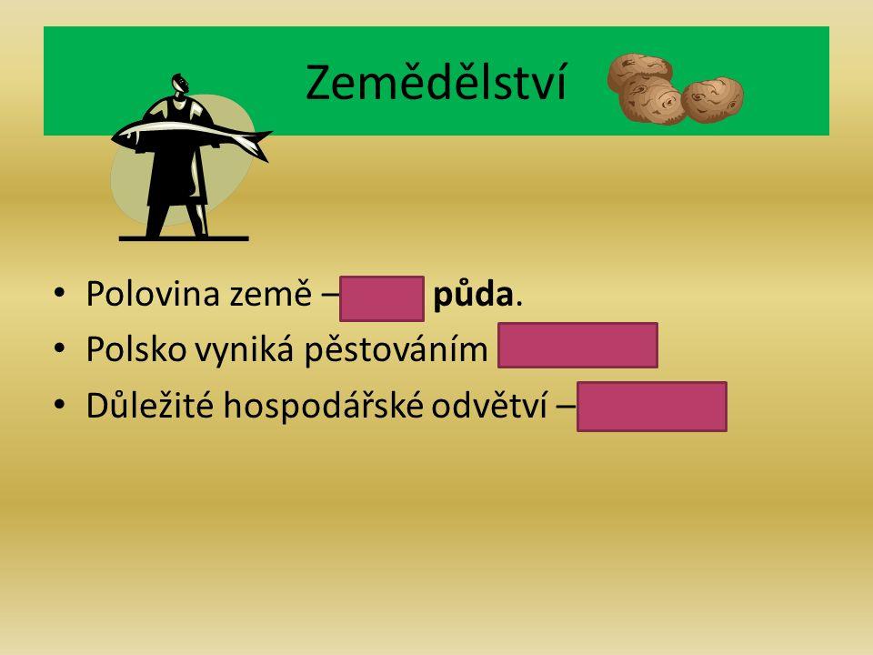 Zemědělství Polovina země – orná půda. Polsko vyniká pěstováním brambor.