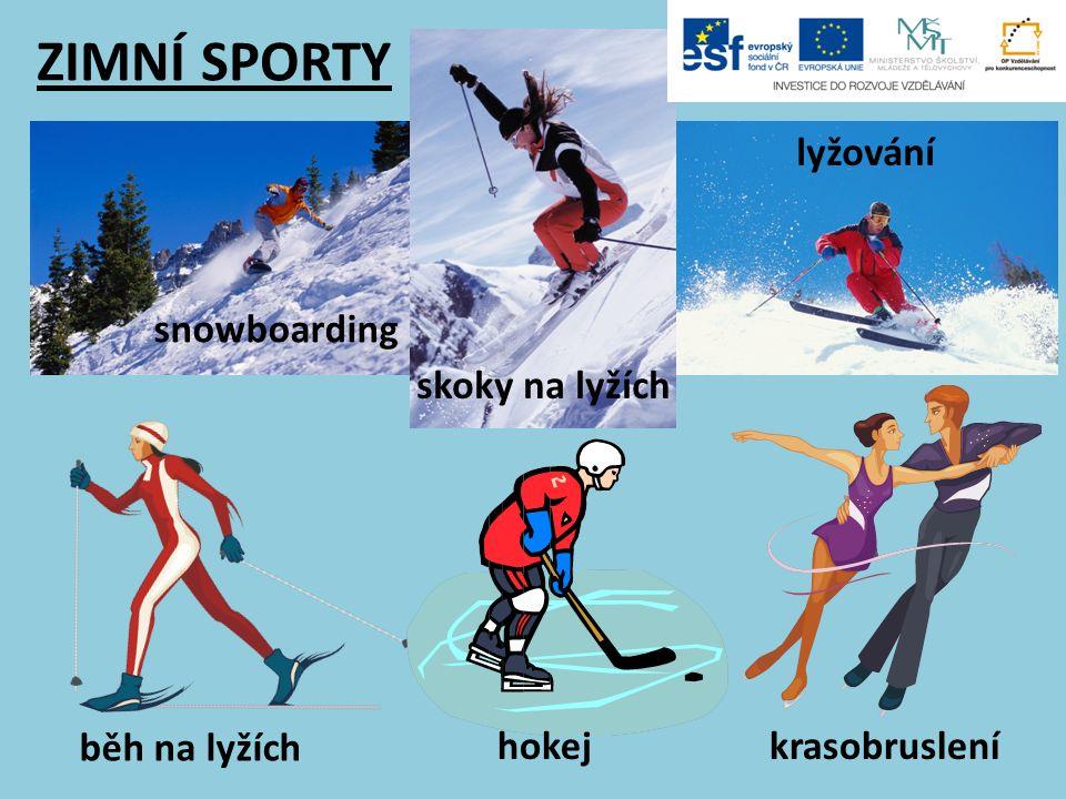 ZIMNÍ SPORTY snowboarding skoky na lyžích lyžování běh na lyžích hokejkrasobruslení