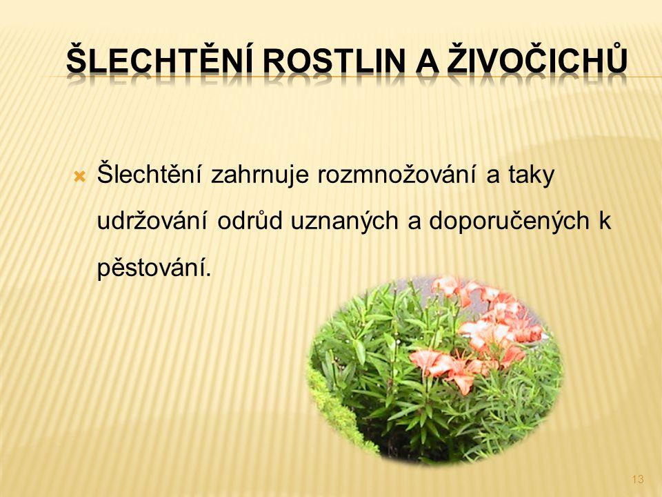 Šlechtění zahrnuje rozmnožování a taky udržování odrůd uznaných a doporučených k pěstování. 13