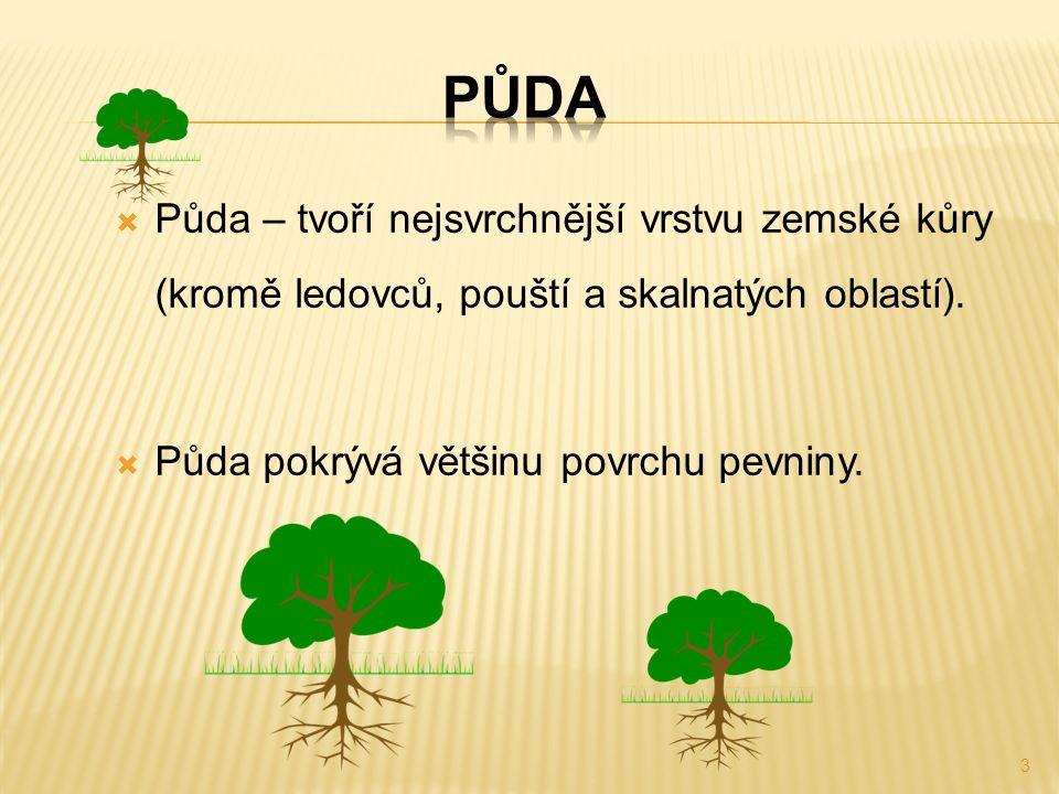  Půda – tvoří nejsvrchnější vrstvu zemské kůry (kromě ledovců, pouští a skalnatých oblastí).