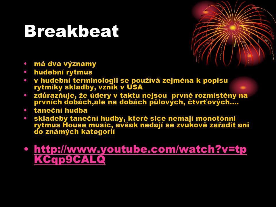 Rave nebo také Breakbeat Hardcore spojené s undergroundovým hnutím ve Velké Británii termín používaný pro taneční zábavy (většinou celonoční) s rychlou elektronickou hudbou a světelnou show Na těchto party hrají DJ různé styly hudby, např.