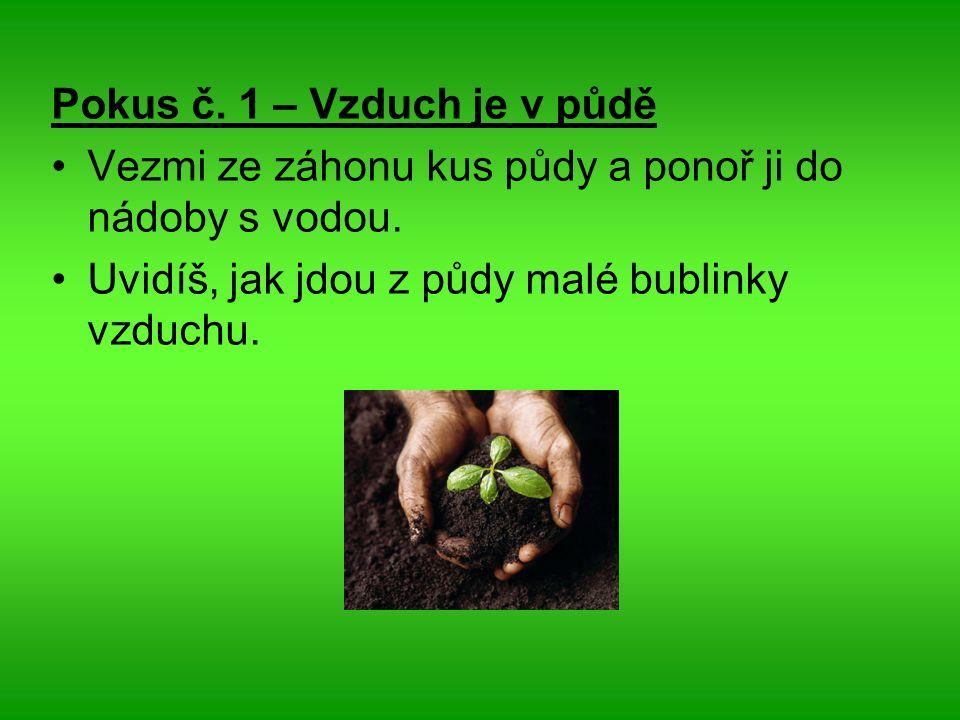 Pokus č. 1 – Vzduch je v půdě Vezmi ze záhonu kus půdy a ponoř ji do nádoby s vodou.