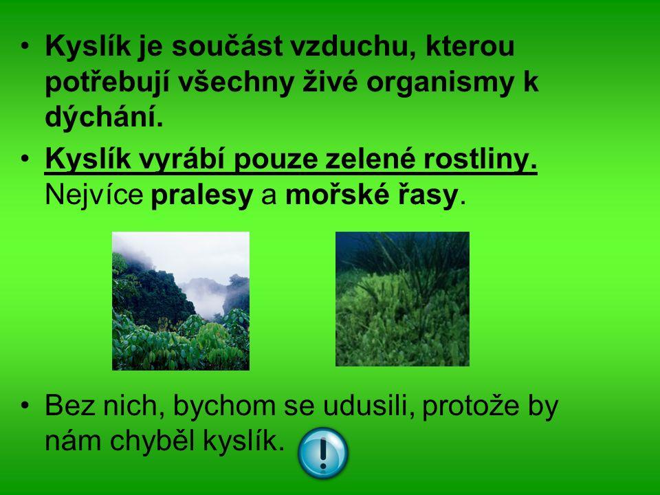 Kyslík je součást vzduchu, kterou potřebují všechny živé organismy k dýchání.