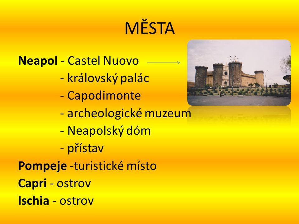 MĚSTA Neapol - Castel Nuovo - královský palác - Capodimonte - archeologické muzeum - Neapolský dóm - přístav Pompeje -turistické místo Capri - ostrov