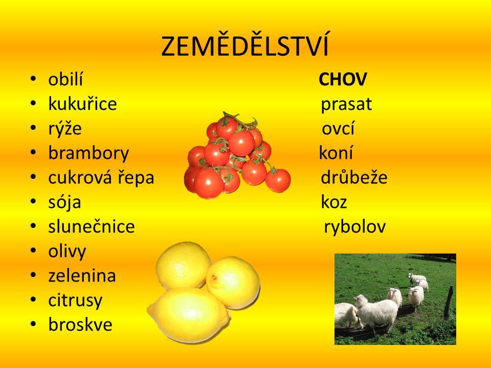 ZEMĚDĚLSTVÍ obilí CHOV kukuřice prasat rýže ovcí brambory koní cukrová řepa drůbeže sója koz slunečnice rybolov olivy zelenina citrusy broskve