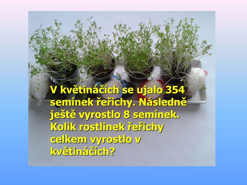 V květináčích se ujalo 354 semínek řeřichy. Následně ještě vyrostlo 8 semínek. Kolik rostlinek řeřichy celkem vyrostlo v květináčích?
