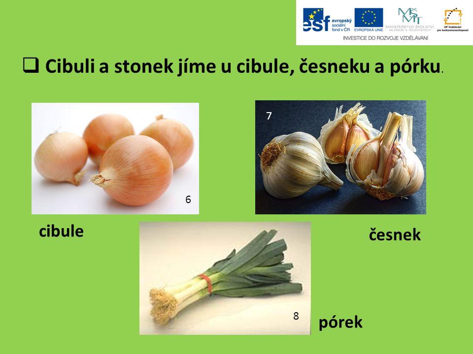  Cibuli a stonek jíme u cibule, česneku a pórku. 6 7 8 cibule pórek česnek