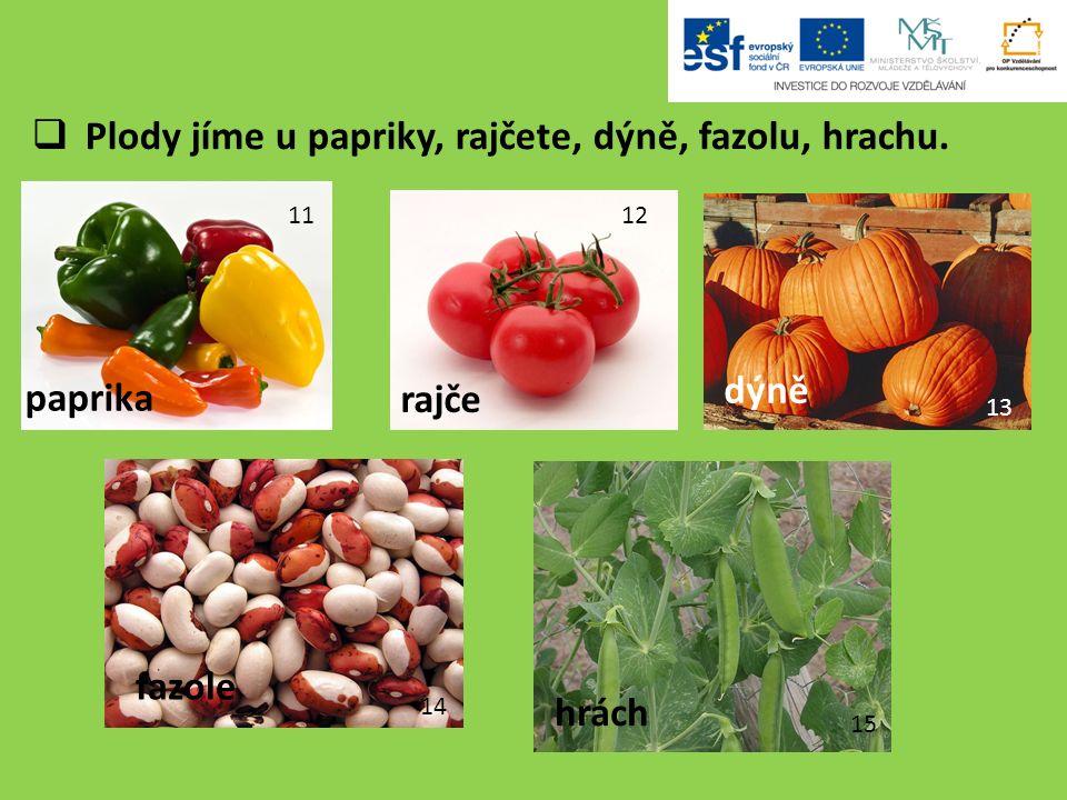  Plody jíme u papriky, rajčete, dýně, fazolu, hrachu.