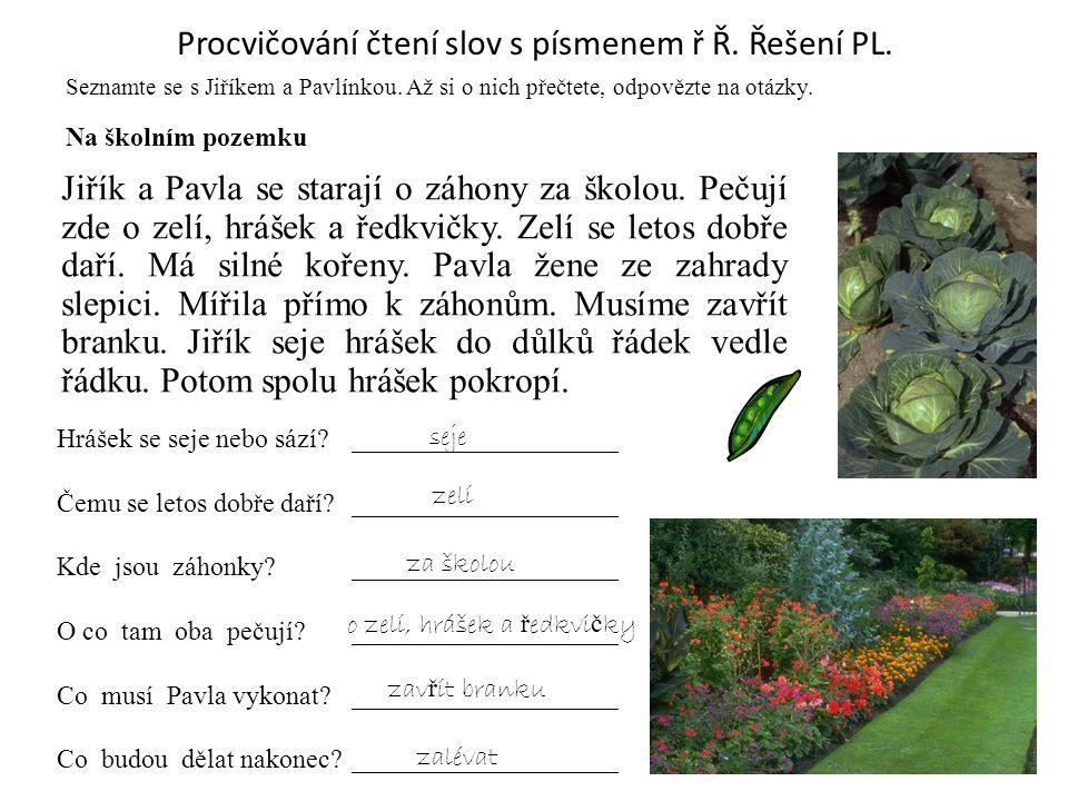 Procvičování čtení slov s písmenem ř Ř. Řešení PL.