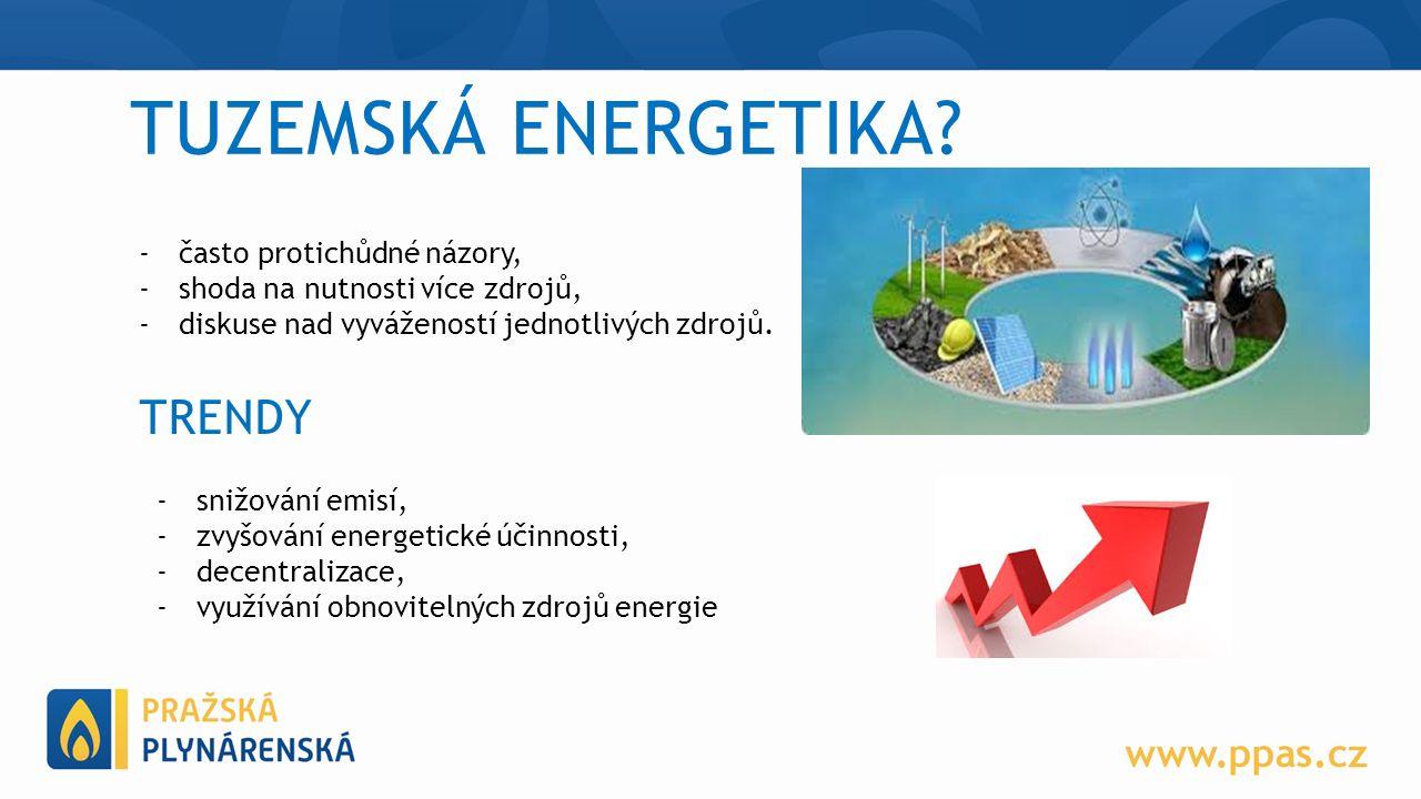 TUZEMSKÁ ENERGETIKA.
