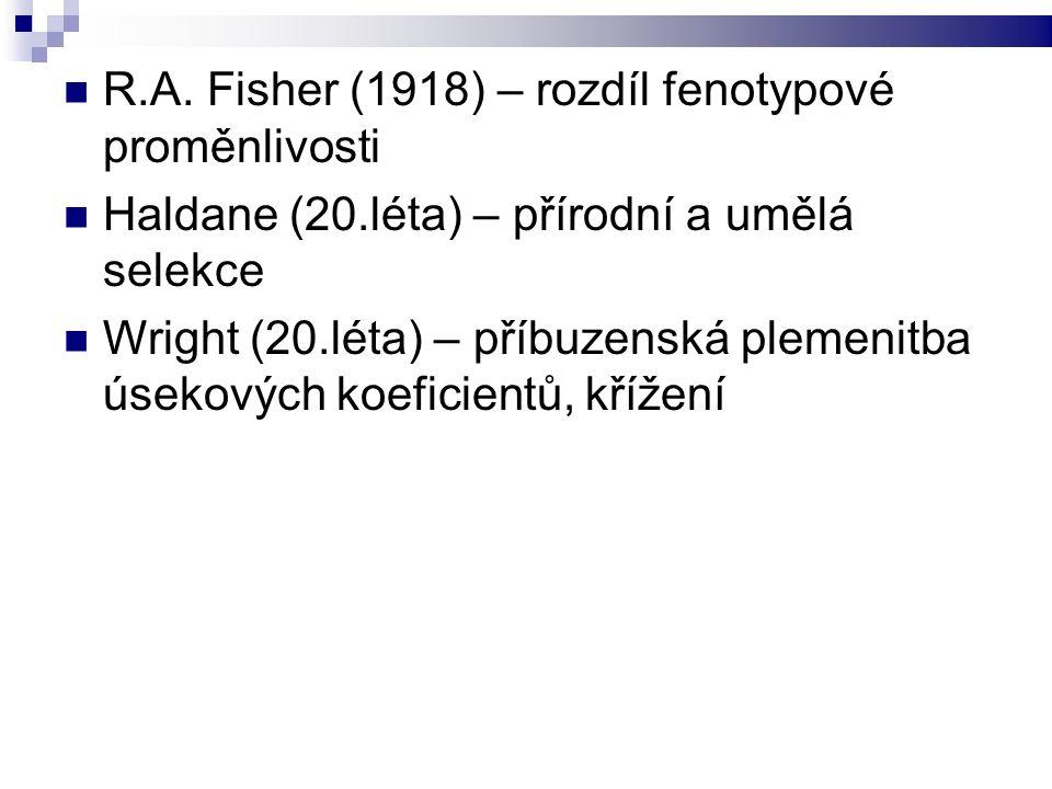 R.A. Fisher (1918) – rozdíl fenotypové proměnlivosti Haldane (20.léta) – přírodní a umělá selekce Wright (20.léta) – příbuzenská plemenitba úsekových