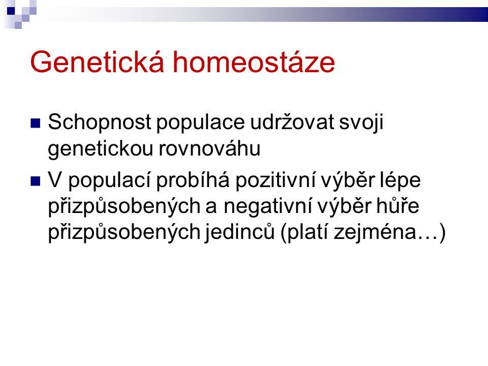 Genetická homeostáze Schopnost populace udržovat svoji genetickou rovnováhu V populací probíhá pozitivní výběr lépe přizpůsobených a negativní výběr hůře přizpůsobených jedinců (platí zejména…)