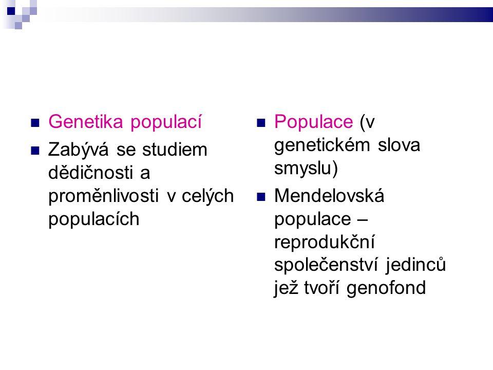 Genetika populací Zabývá se studiem dědičnosti a proměnlivosti v celých populacích Populace (v genetickém slova smyslu) Mendelovská populace – reprodukční společenství jedinců jež tvoří genofond