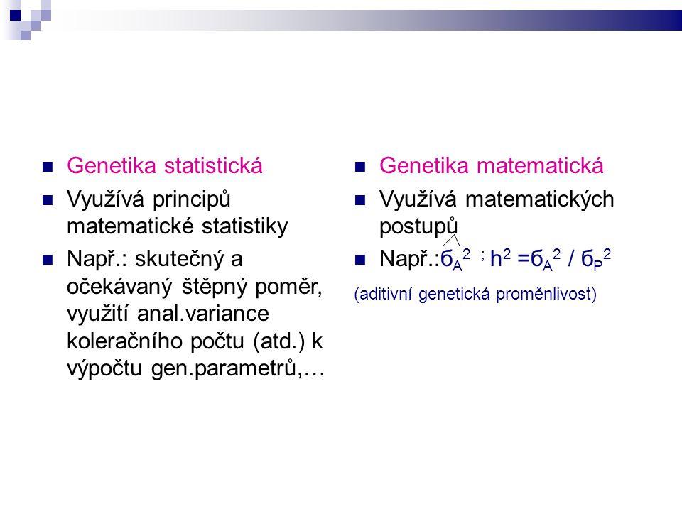 Genetika statistická Využívá principů matematické statistiky Např.: skutečný a očekávaný štěpný poměr, využití anal.variance koleračního počtu (atd.) k výpočtu gen.parametrů,… Genetika matematická Využívá matematických postupů Např.:б A 2 ; h 2 =б A 2 / б P 2 (aditivní genetická proměnlivost)