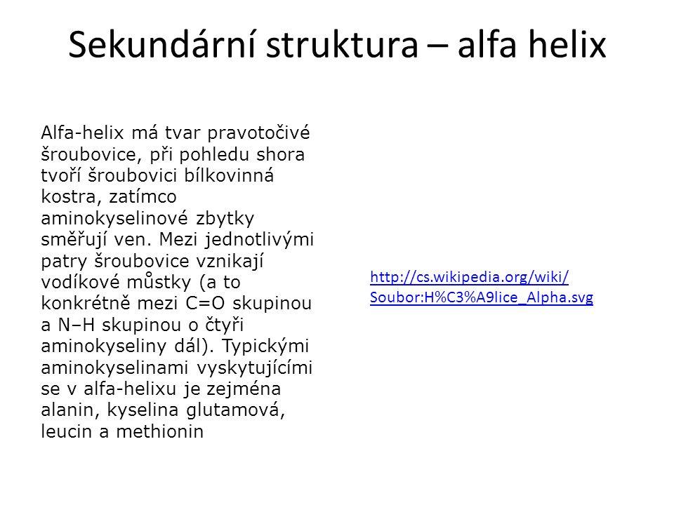 Sekundární struktura – alfa helix http://cs.wikipedia.org/wiki/ Soubor:H%C3%A9lice_Alpha.svg Alfa-helix má tvar pravotočivé šroubovice, při pohledu sh