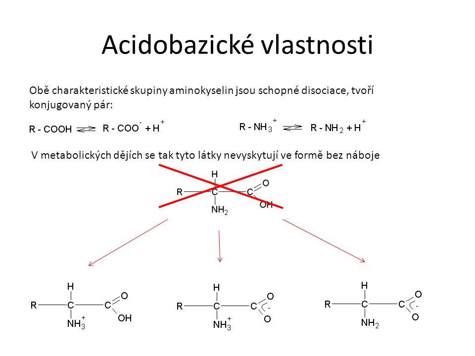 Acidobazické vlastnosti Forma s kladným a záporným nábojem – amfion – při určité hodnotě pH (isoelektrický bod), je pro každou aminokyselinu charakteristický, závisí na počtu charakteristických skupin.