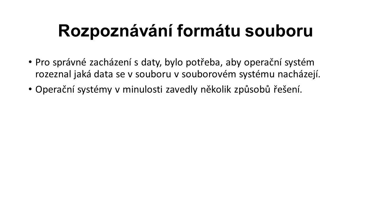 Rozpoznávání formátu souboru Pro správné zacházení s daty, bylo potřeba, aby operační systém rozeznal jaká data se v souboru v souborovém systému nacházejí.
