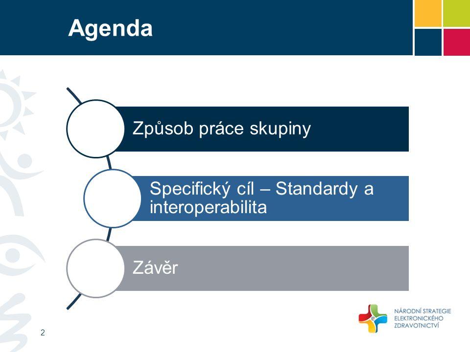 Agenda Způsob práce skupiny Specifický cíl – Standardy a interoperabilita Závěr 2