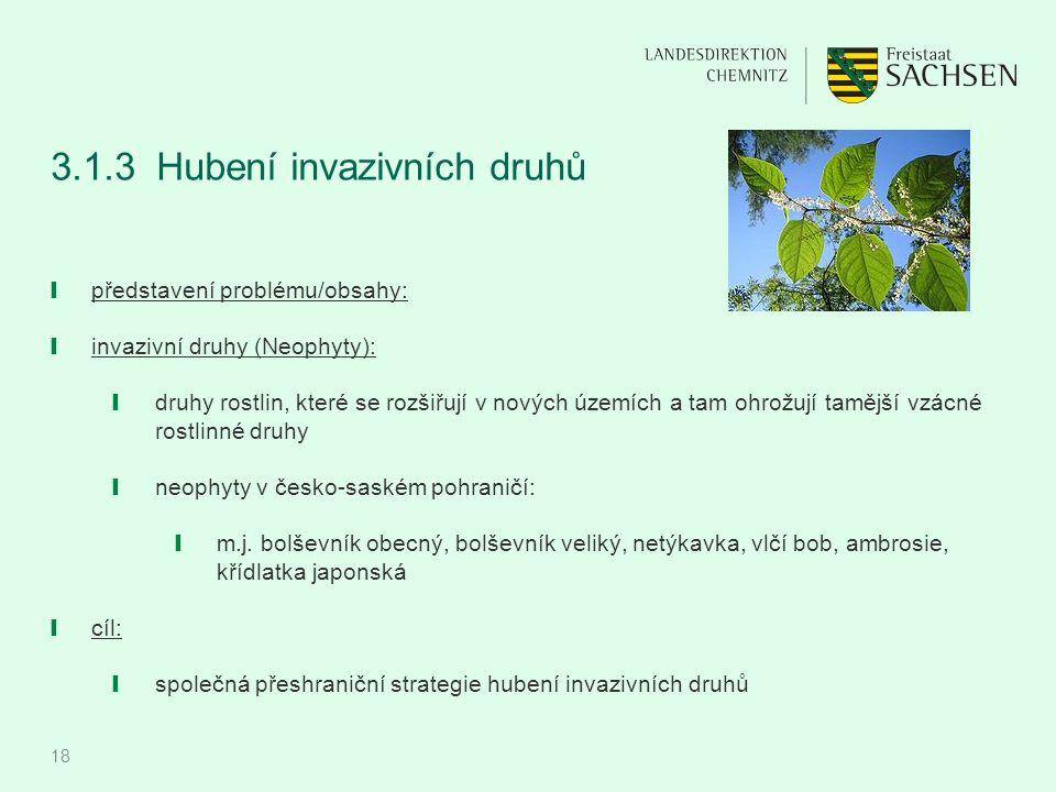 18 3.1.3Hubení invazivních druhů ❙ představení problému/obsahy: ❙ invazivní druhy (Neophyty): ❙ druhy rostlin, které se rozšiřují v nových územích a t