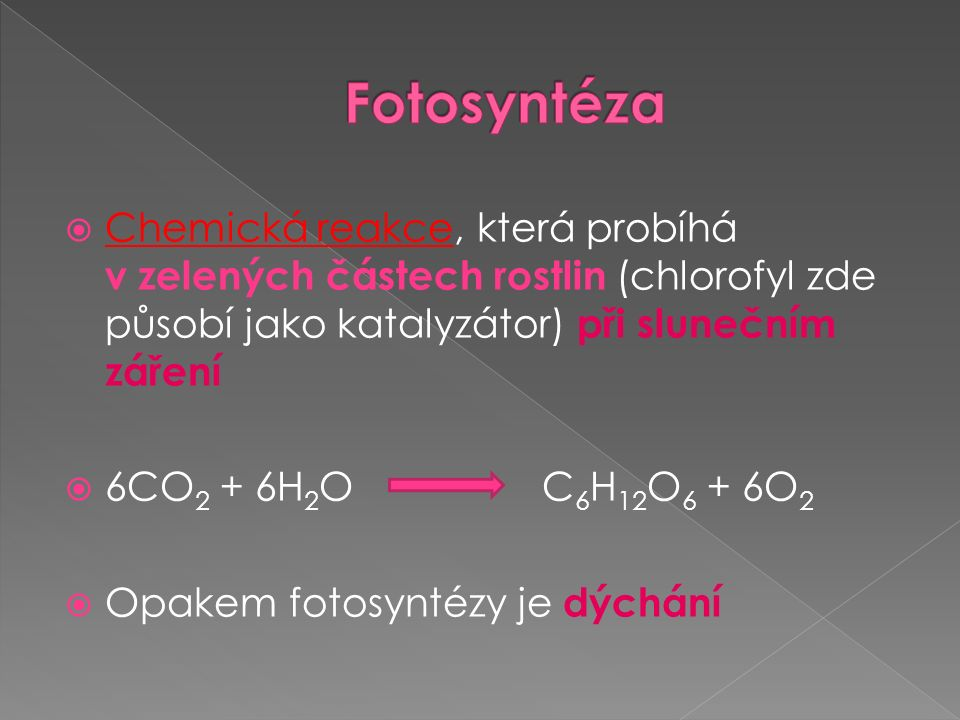  Chemická reakce, která probíhá v zelených částech rostlin (chlorofyl zde působí jako katalyzátor) při slunečním záření  6CO 2 + 6H 2 O C 6 H 12 O 6