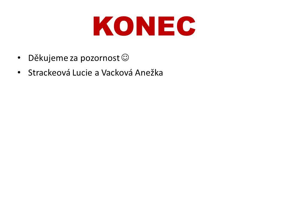 KONEC Děkujeme za pozornost Strackeová Lucie a Vacková Anežka
