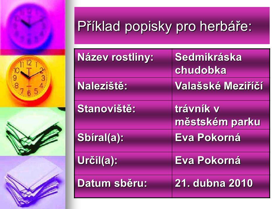 Konec Mgr.Zdenka Zavičáková Mgr.