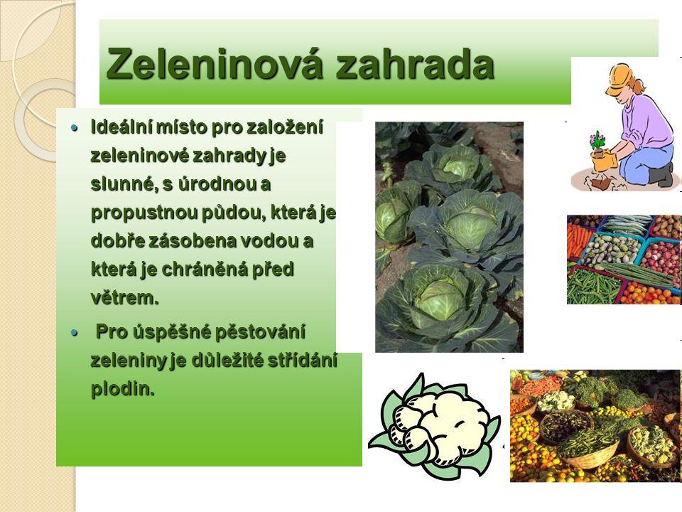 Zeleninová zahrada Nejčastější plodiny : kapusta, červená řepa, fazole,hrách, celer, rajčata, salát, saturejka, kedluben, cibule,mrkev, salát, okurky, brambory, boby, máta, křen pór, cibule