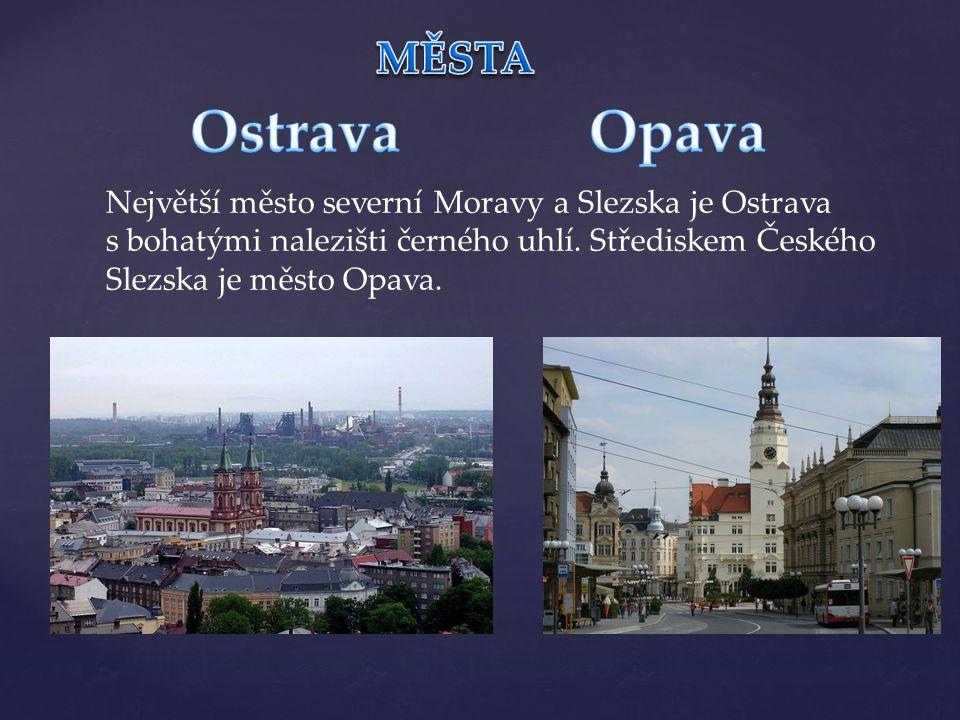 Největší město severní Moravy a Slezska je Ostrava s bohatými nalezišti černého uhlí. Střediskem Českého Slezska je město Opava.