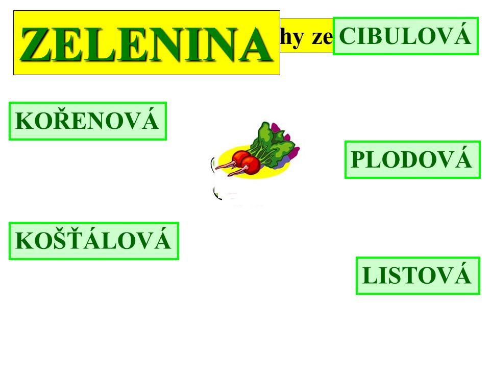 Zopakujme si druhy zeleniny: ZELENINA KOŘENOVÁ CIBULOVÁ PLODOVÁ LISTOVÁ KOŠŤÁLOVÁ