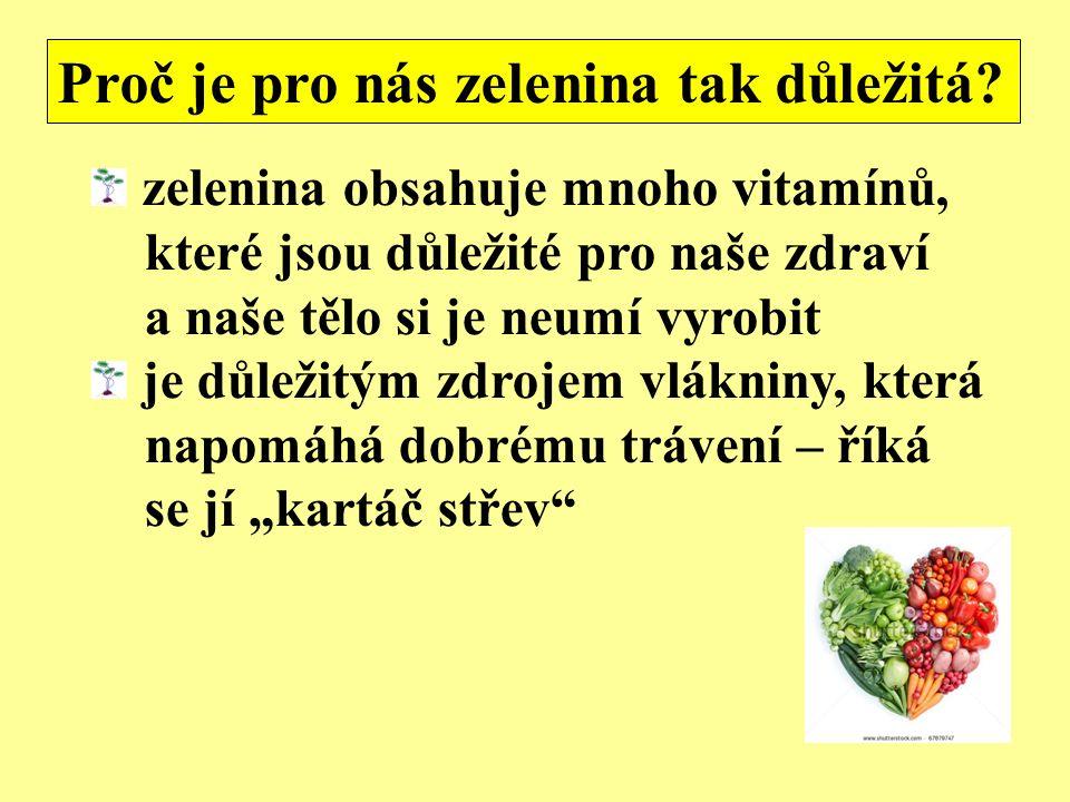 zelenina obsahuje mnoho vitamínů, které jsou důležité pro naše zdraví a naše tělo si je neumí vyrobit je důležitým zdrojem vlákniny, která napomáhá do