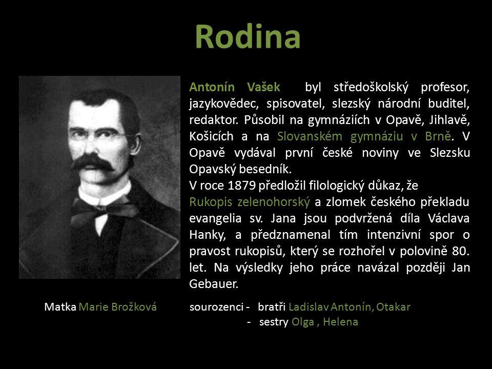 Studium V roce 1881 začíná Vladimír Vašek navštěvovat brněnské gymnázium.