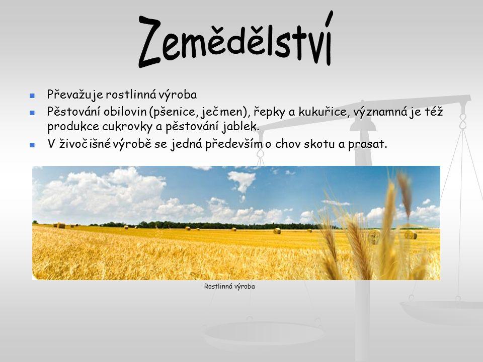 Převažuje rostlinná výroba Převažuje rostlinná výroba Pěstování obilovin (pšenice, ječmen), řepky a kukuřice, významná je též produkce cukrovky a pěst