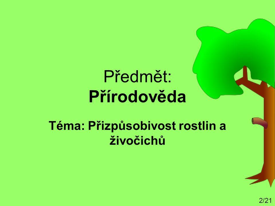 Předmět: Přírodověda Téma: Přizpůsobivost rostlin a živočichů 2/21