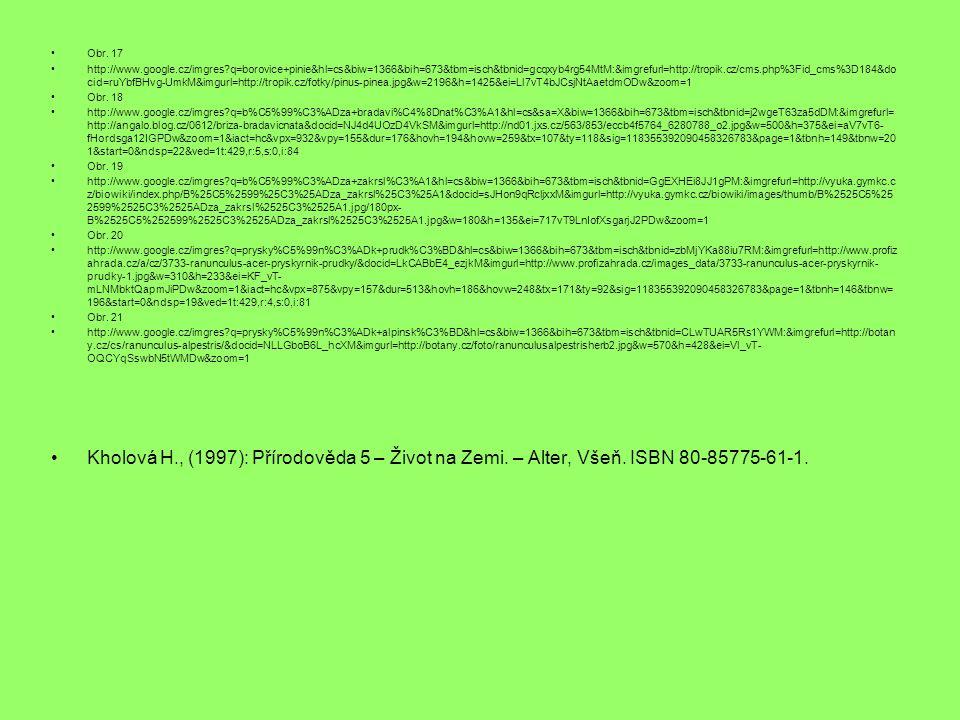 Obr. 17 http://www.google.cz/imgres?q=borovice+pinie&hl=cs&biw=1366&bih=673&tbm=isch&tbnid=gcqxyb4rg54MtM:&imgrefurl=http://tropik.cz/cms.php%3Fid_cms