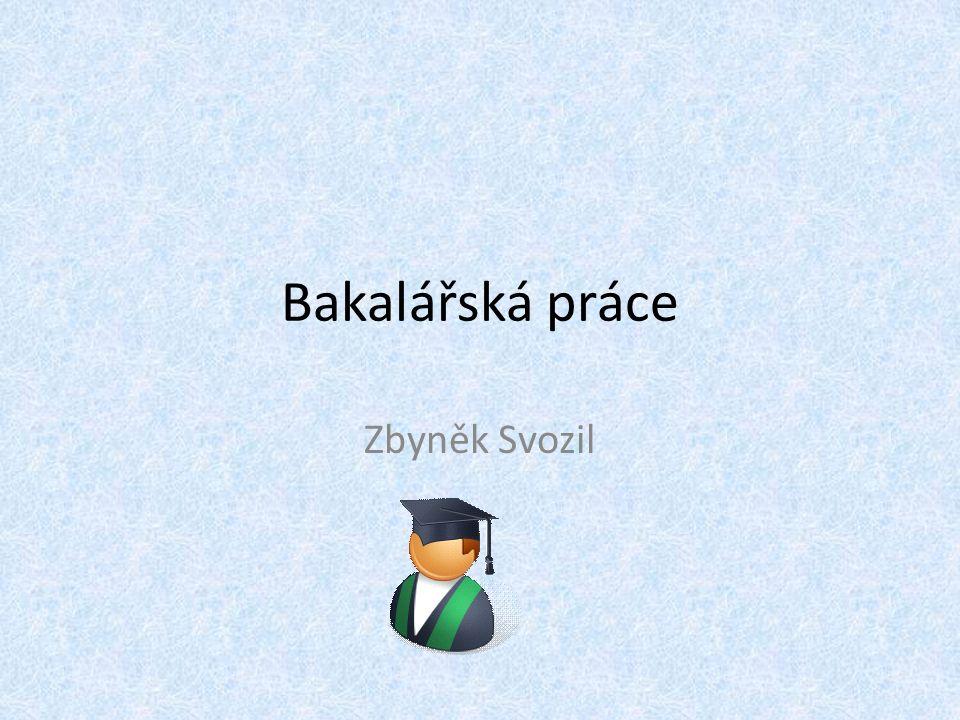 Bakalářská práce Zbyněk Svozil