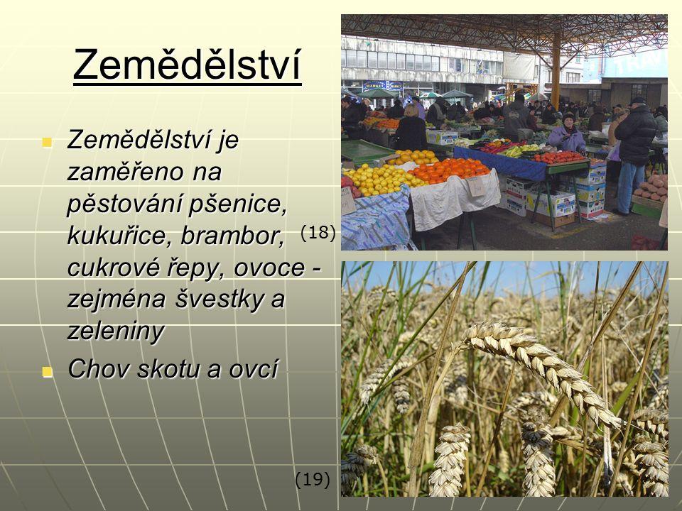 Zemědělství Zemědělství je zaměřeno na pěstování pšenice, kukuřice, brambor, cukrové řepy, ovoce - zejména švestky a zeleniny Zemědělství je zaměřeno
