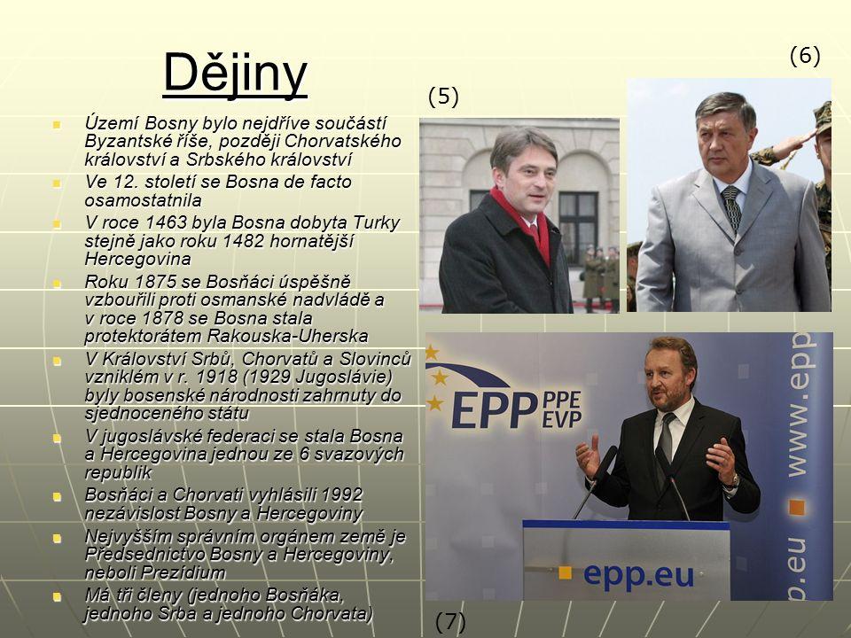 Dějiny Území Bosny bylo nejdříve součástí Byzantské říše, později Chorvatského království a Srbského království Území Bosny bylo nejdříve součástí Byz